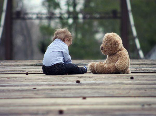 adorable-baby-bear-39369