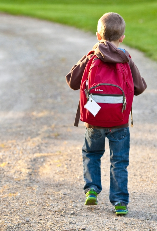 back-view-backpack-boy-207697.jpg